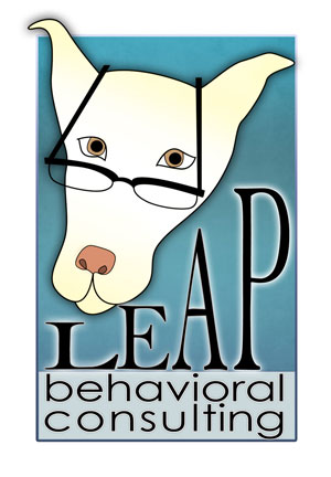 Leap Behavioral Consulting