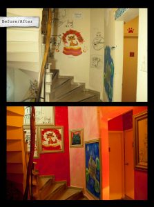 stray cat staircase 13