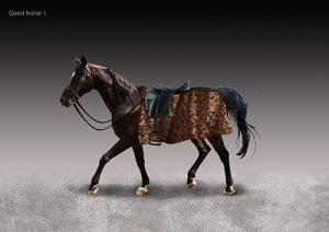 guest-horse-1