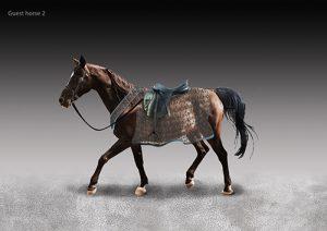 guest-horse-2
